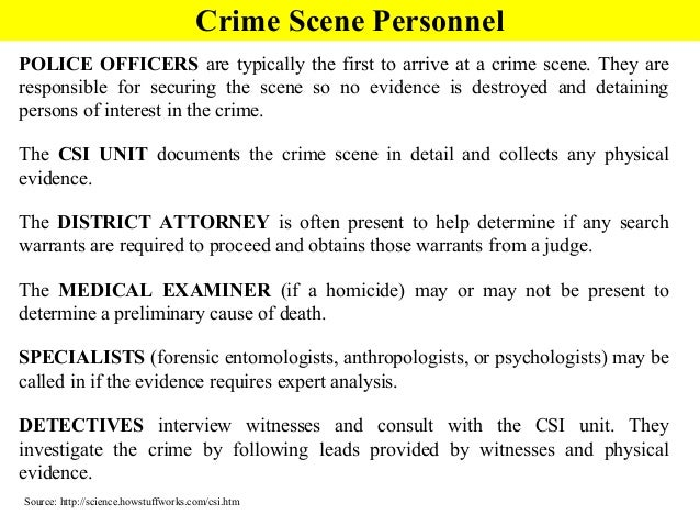 Crime Scene Basics PowerPoint – Forensic Entomology Worksheet