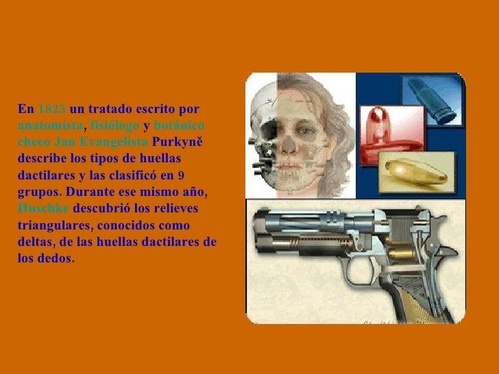 En  1823  un tratado escrito por  anatomista ,  fisiólogo  y  botánico   checo   Jan  Evangelista  Purkyně  describe los t...