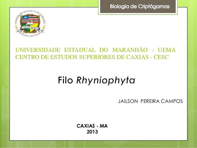 UNIVERSIDADE ESTADUAL DO MARANHÃO - UEMA CENTRO DE ESTUDOS SUPERIORES DE CAXIAS - CESC  JAILSON PEREIRA CAMPOS  CAXIAS - M...