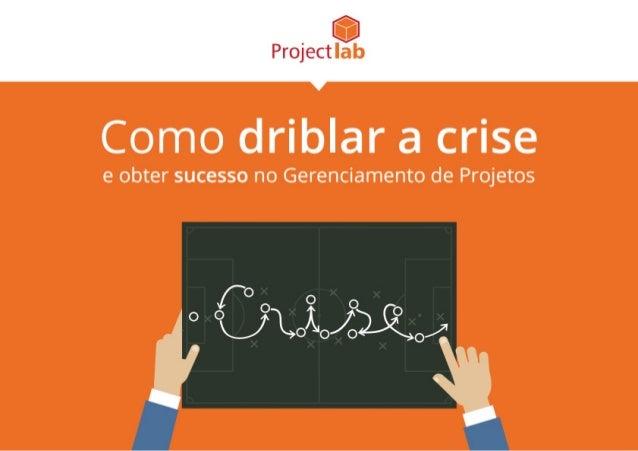 eBook - Como driblar a crise e obter sucesso no Gerenciamento de Projetos
