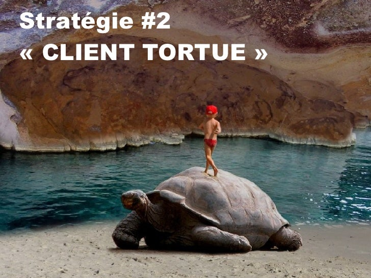 Stratégie #2  «CLIENT TORTUE»