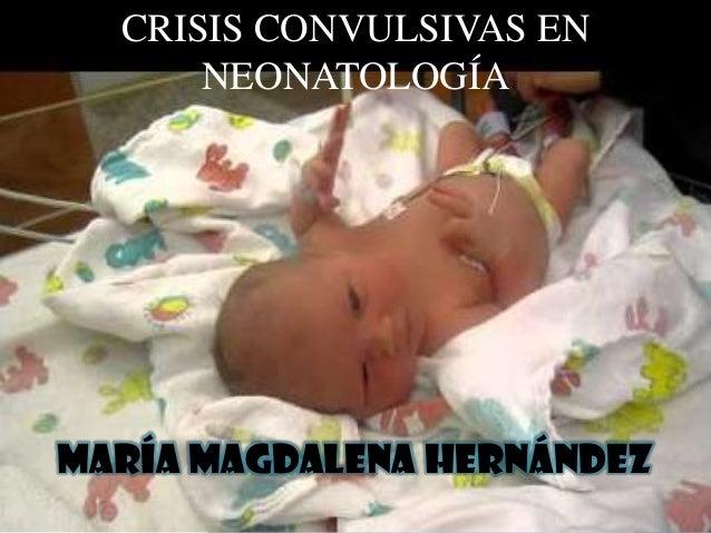RICARDO OCHOA LÓPEZ R2 DE PEDIATRÍA MÉDICA CRISIS CONVULSIVAS EN NEONATOLOGÍA María Magdalena Hernández
