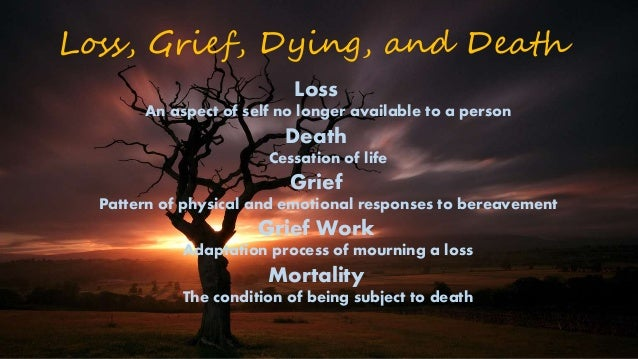 grief and crisis Since 1982, crisis support services of alameda county (css) has provided low-fee counseling to bereaved members of the community css also plays a vital role in responding to traumatic.