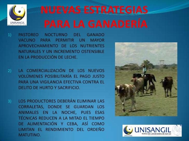 NUEVAS ESTRATEGIAS               PARA LA GANADERÍA 1)   PASTOREO NOCTURNO DEL GANADO      VACUNO PARA PERMITIR UN MAYOR   ...
