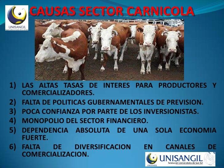 CAUSAS SECTOR CARNICOLA     1) LAS ALTAS TASAS DE INTERES PARA PRODUCTORES Y      COMERCIALIZADORES. 2)   FALTA DE POLITIC...