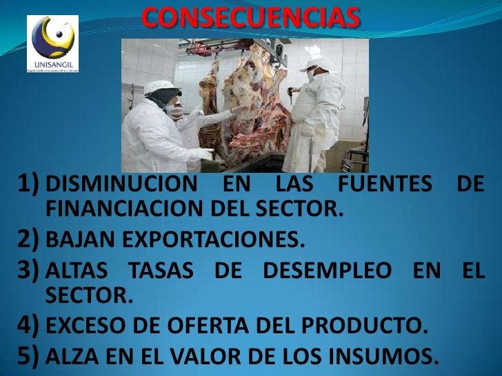 CONSECUENCIAS     1) DISMINUCION EN LAS FUENTES DE    FINANCIACION DEL SECTOR. 2) BAJAN EXPORTACIONES. 3) ALTAS TASAS DE D...