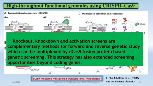 High-throughput functional genomics using CRISPR–Cas9 11/8/2015 Department of Plant Biotechnology, GKVK, UAS, Bengaluru 27...