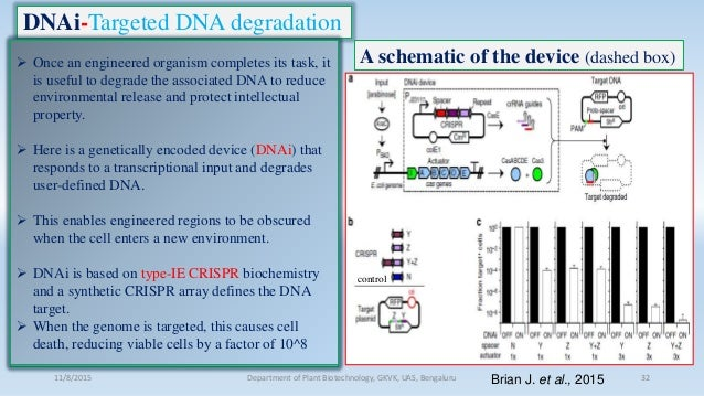 DNAi-Targeted DNA degradation 11/8/2015 Department of Plant Biotechnology, GKVK, UAS, Bengaluru 32  Once an engineered or...