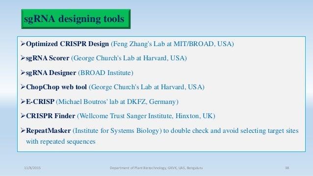 sgRNA designing tools Optimized CRISPR Design (Feng Zhang's Lab at MIT/BROAD, USA) sgRNA Scorer (George Church's Lab at ...