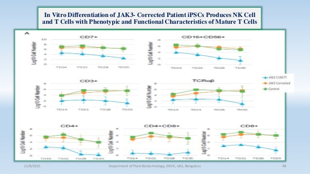 In Vitro Differentiation of JAK3- Corrected Patient iPSCs Produces NK Cell and T Cells with Phenotypic and Functional Char...