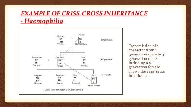 Miraculous Criss Cross Inheritance Hairstyles For Women Draintrainus