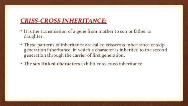 Criss cross inheritance – Patterns of Inheritance Worksheet