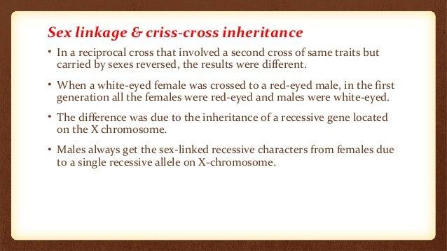 Terrific Criss Cross Inheritance Short Hairstyles Gunalazisus