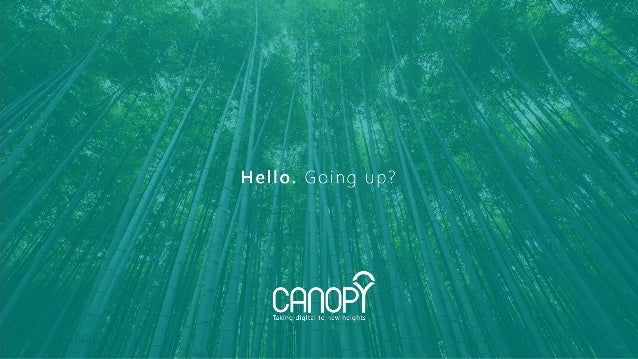 canopy.ro TAKING DIGITAL TO NEW HEIGHTS