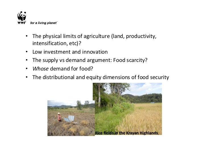 Food sovereignty for food security: how protecting traditional knowledge and agro-biodiversity can be part of the solution Slide 2