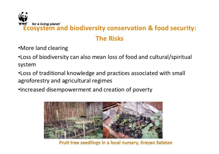 Food sovereignty for food security: how protecting traditional knowledge and agro-biodiversity can be part of the solution Slide 3