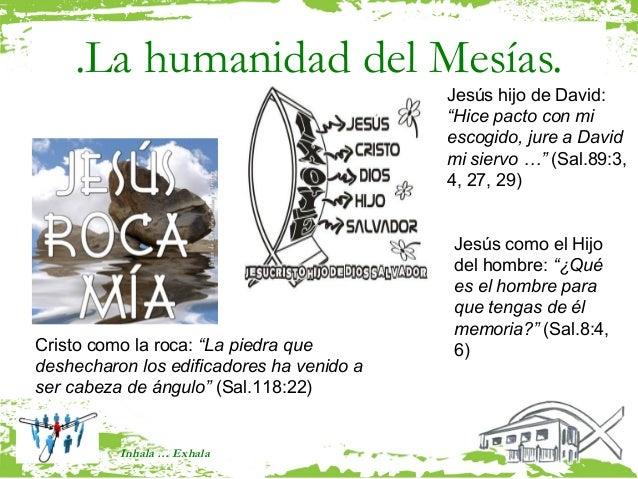 .La humanidad del Mesías.                                           Jesús hijo de David:                                  ...