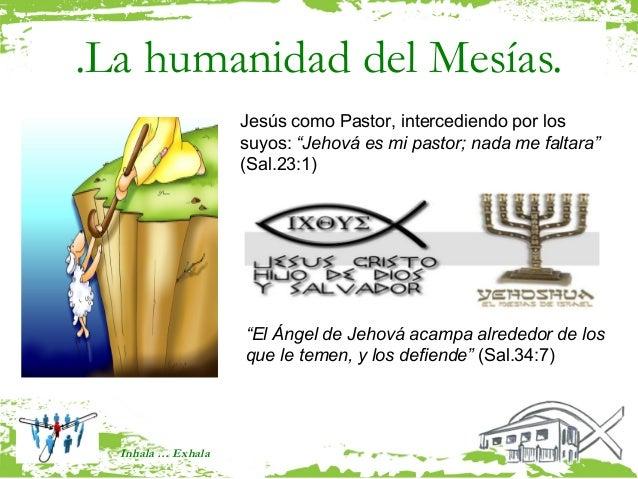""".La humanidad del Mesías.                    Jesús como Pastor, intercediendo por los                    suyos: """"Jehová es..."""