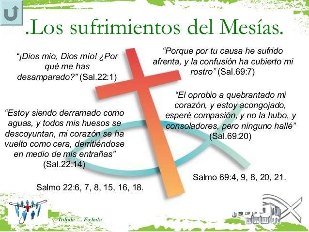 """.Los sufrimientos del Mesías.                                           """"Porque por tu causa he sufrido   """"¡Dios mío, Dios..."""