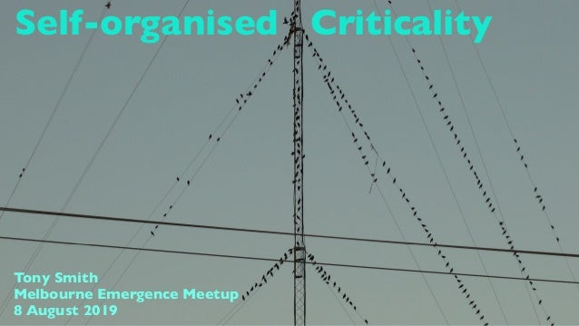 Self-organised Criticality Tony Smith Melbourne Emergence Meetup 8 August 2019