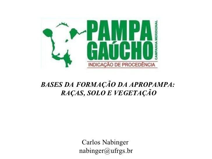 BASES DA FORMAÇÃO DA APROPAMPA: RAÇAS, SOLO E VEGETAÇÃO Carlos Nabinger  [email_address]