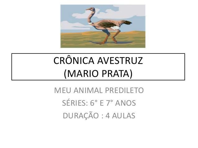 CRÔNICA AVESTRUZ(MARIO PRATA)MEU ANIMAL PREDILETOSÉRIES: 6° E 7° ANOSDURAÇÃO : 4 AULAS