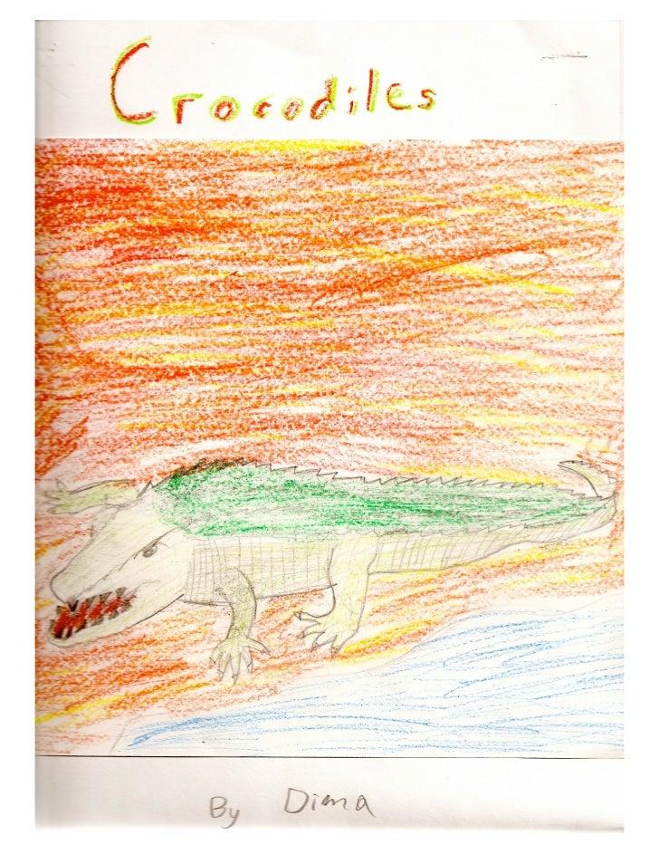 Crocodiles by Dima