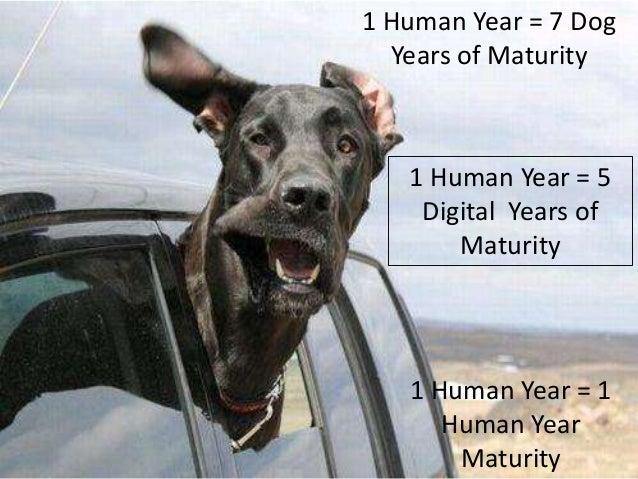 1 Human Year = 7 DogYears of Maturity1 Human Year = 1Human YearMaturity1 Human Year = 5Digital Years ofMaturity
