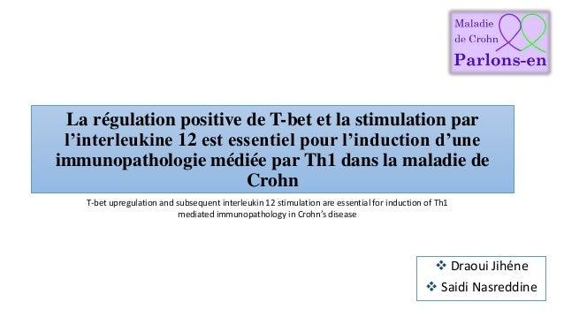 La régulation positive de T-bet et la stimulation par l'interleukine 12 est essentiel pour l'induction d'une immunopatholo...