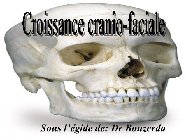 Sous l'égide de: Dr Bouzerda