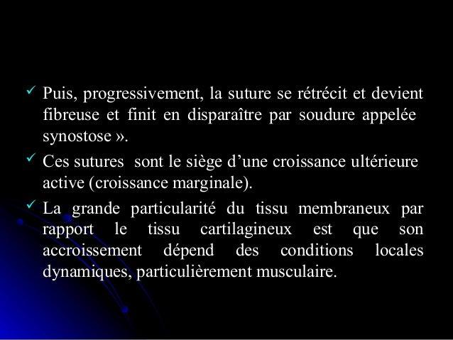 Ossification membraneuseOssification membraneuse Marche deMarche de l'ossificationl'ossification -. v,-. v, capillairecapi...