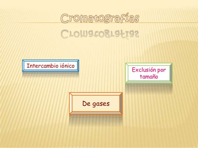 Intercambio iónico                                Exclusión por                                  tamaño                   ...
