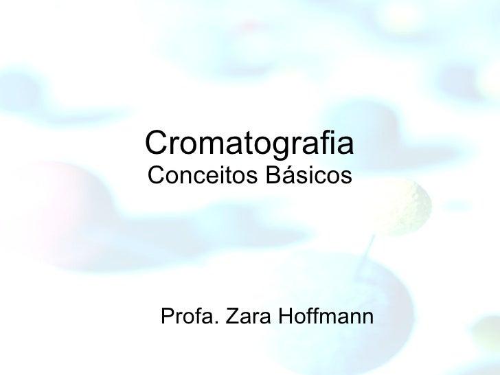 Profa. Zara Hoffmann Cromatografia Conceitos Básicos