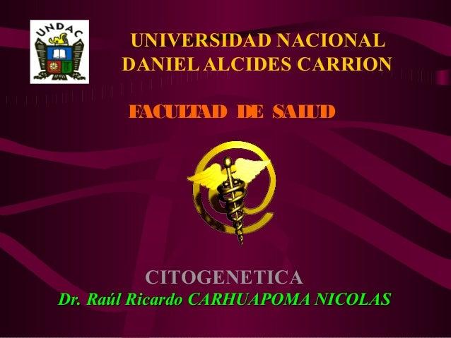 UNIVERSIDAD NACIONAL DANIELALCIDES CARRION FACULTAD DE SALUD CITOGENETICA Dr. Raúl Ricardo CARHUAPOMA NICOLASDr. Raúl Rica...