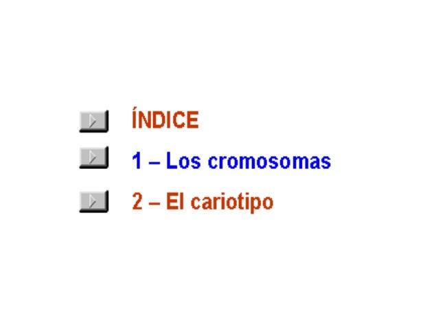 Cromos~1 Slide 2