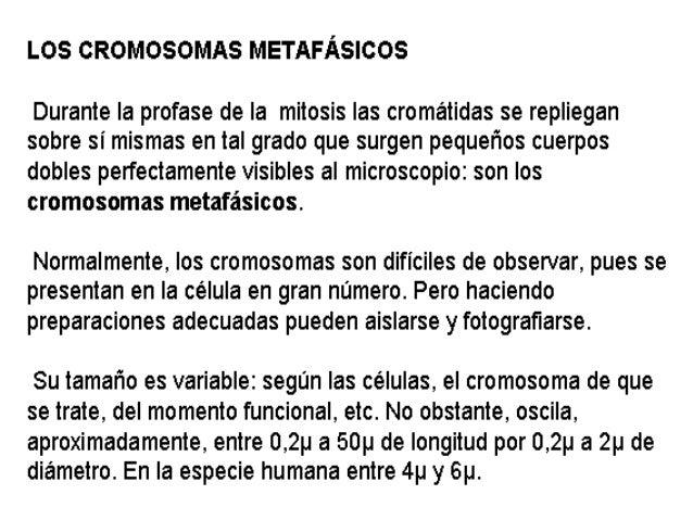 Cromos~1 Slide 3