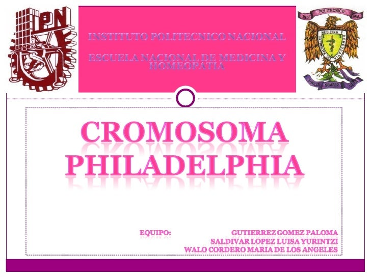 Cromosoma philadelphia - M a interiorismo cb granada ...