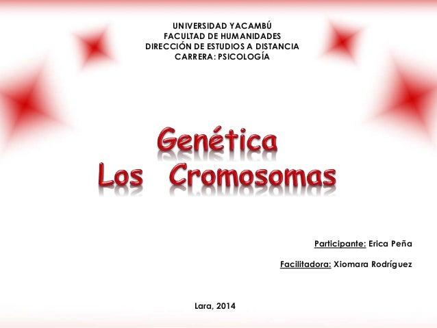 UNIVERSIDAD YACAMBÚ  FACULTAD DE HUMANIDADES  DIRECCIÓN DE ESTUDIOS A DISTANCIA  CARRERA: PSICOLOGÍA  Participante: Erica ...