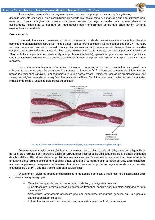 1 Eduardo Antunes Martins - Cromossomos e Mutações Cromossômicas - Genética As mutações cromossômicas seguem quase os mesm...