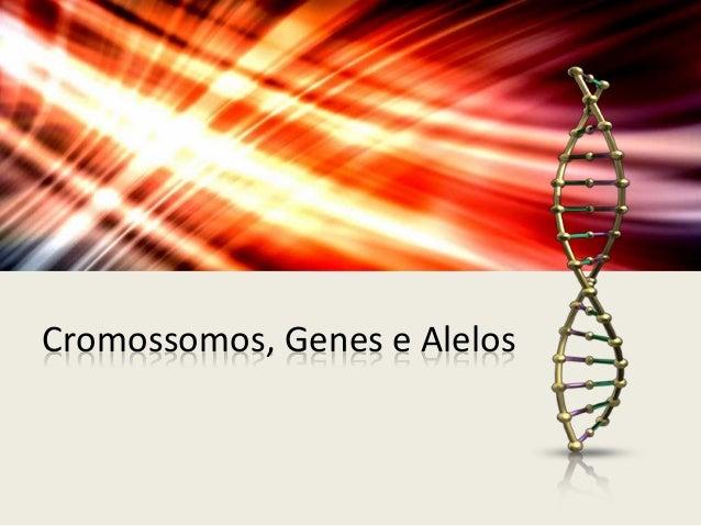 Cromossomos, Genes e Alelos