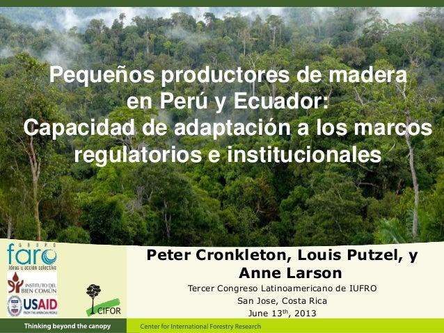Pequeños productores de madera en Perú y Ecuador: Capacidad de adaptación a los marcos regulatorios e institucionales Pete...