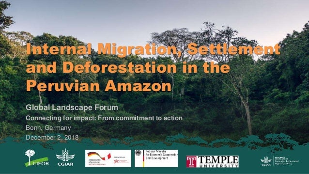 Internal Migration, Settlement and Deforestation in the Peruvian Amazon Global Landscape Forum Connecting for impact: From...