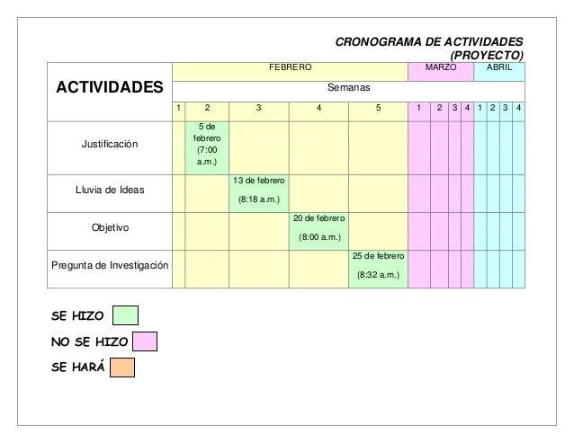CRONOGRAMA DE ACTIVIDADES                                                                                   (PROYECTO)    ...