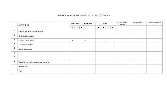 CRONOGRAMA PARA DESARROLLO DEL PROYECTO 2014  ACTIVIDAD  FEBRERO 1  1 2 3 4 5  3  4  s  s  s  Revisión Bibliográfica Práct...
