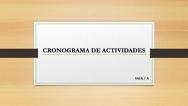 CRONOGRAMA DE ACTIVIDADES SAIA / A