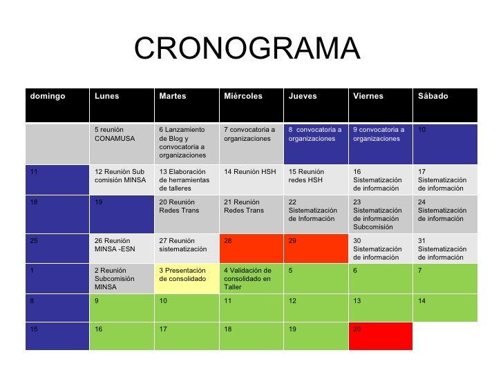 CRONOGRAMA  domingo Lunes Martes Miércoles Jueves Viernes Sábado 5 reunión CONAMUSA 6 Lanzamiento de Blog y convocatoria a...