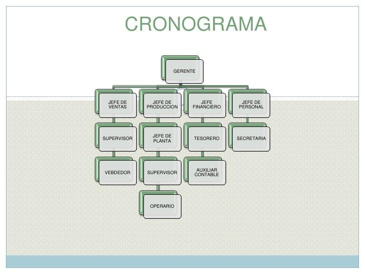 CRONOGRAMA <br />