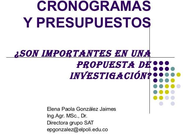 CRONOGRAMAS Y PRESUPUESTOS¿Son importanteS en una           propueSta de          inveStigación?     Elena Paola González ...