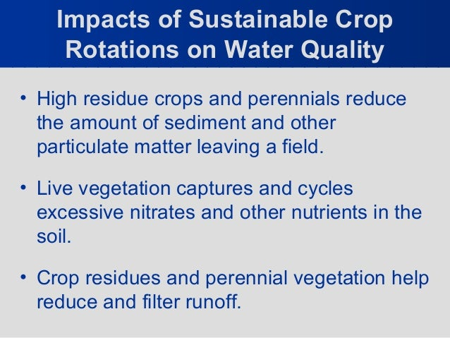 What are the Environmental Benefits of Crop Rotation?