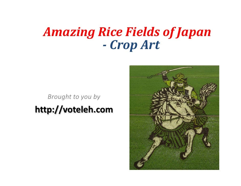AmazingRiceFieldsofJapan            CropArt     Broughttoyouby http://voteleh.com
